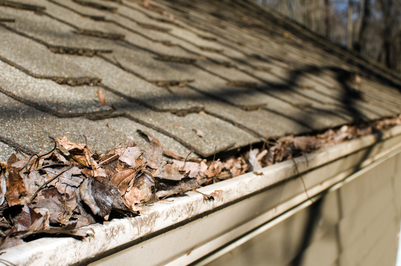 Gutter that may need repair soon